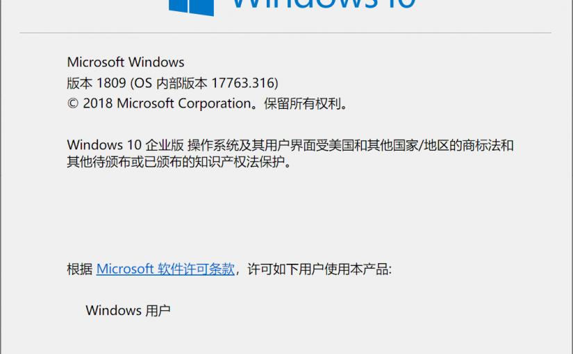 Windows 10 中一个新的内存泄露问题